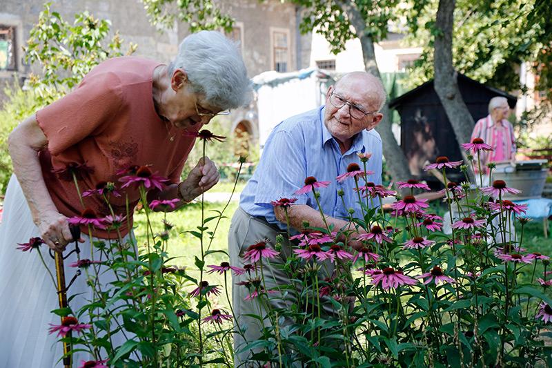 Senioren am Blumenbeet